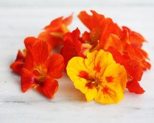 Oost Indische kersbloem uit eigen tuin