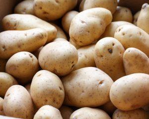 Charlotte aardappel