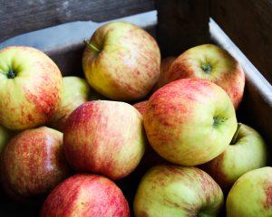 Jonagold appel