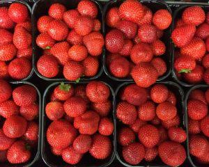 Sonsation aardbeien