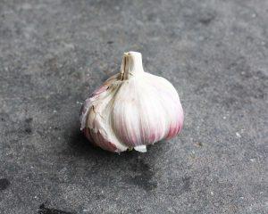 Knoflook roze