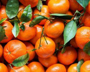 Clementine mandarijn