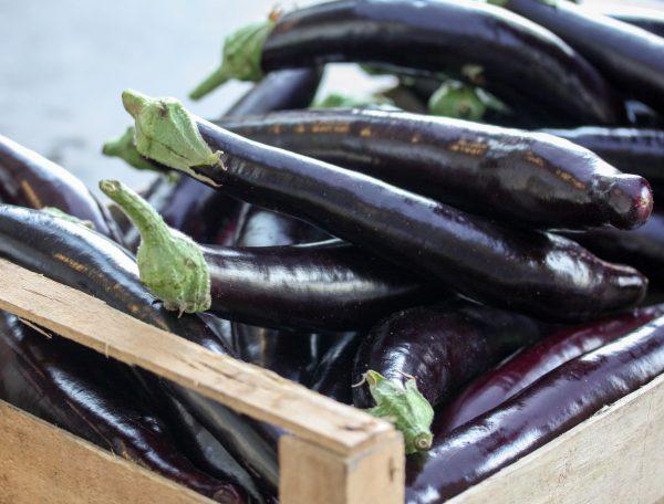 Lunghe aubergine