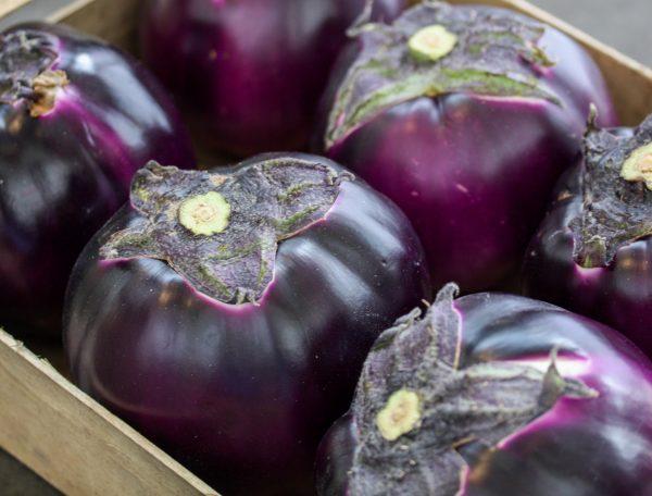 Ronde aubergine violet