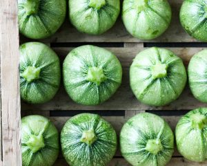 Ronde courgette