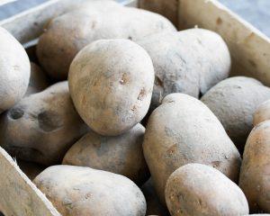 Doré aardappel (nieuwe oogst)