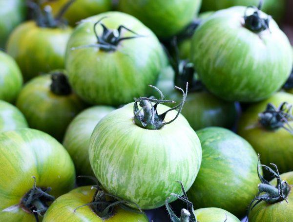 Green zebra tomaat